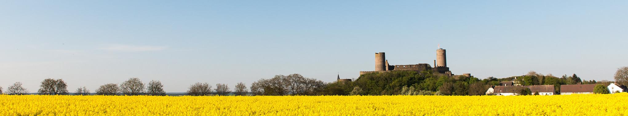 Freundeskreis Burg und Stadt Münzenberg e. V.